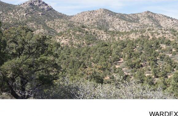 9999 N. Trap Springs Rd., Hackberry, AZ 86411 Photo 18