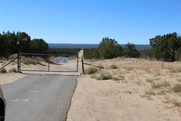 7209 N. Hwy. 191 --, Sanders, AZ 86512 Photo 21