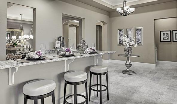 1815 E. Balsam Place, Chandler, AZ 85286 Photo 9