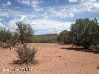 171 Friendship/Conwayden, Ash Fork, AZ 86320 Photo 30