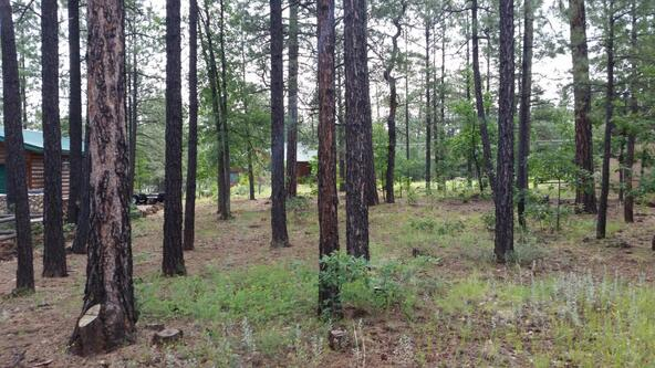 3309 Blacksmith Trail, Pinetop, AZ 85935 Photo 4
