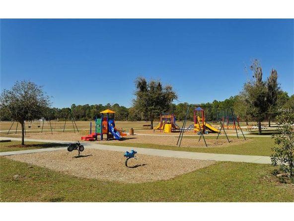 14250 Cattle Egret Pl., Lakewood Ranch, FL 34202 Photo 25