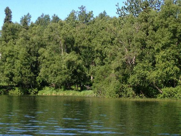 48835 Daniels Lake Rd., Nikiski, AK 99635 Photo 3