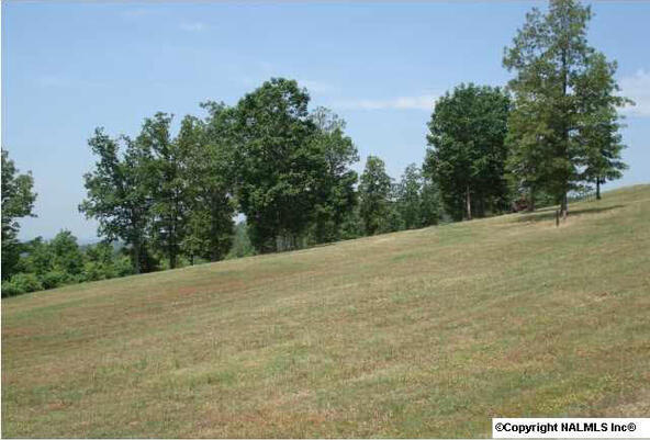 217 River Ridge Dr., Cedar Bluff, AL 35959 Photo 9