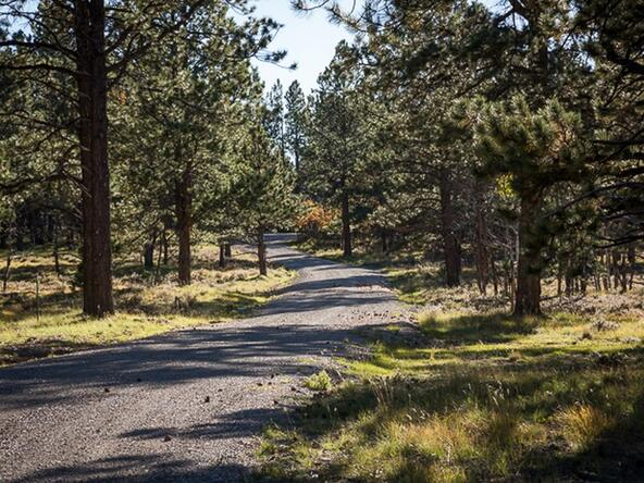 Tbd S. Sage Grouse Rd., Lot 10, Placerville, CO 81430 Photo 5