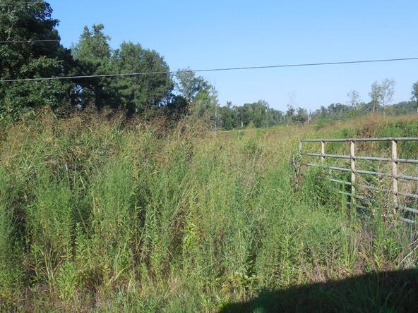 6028 County Rd. 565, Hanceville, AL 35077 Photo 8