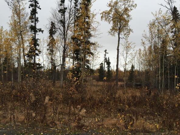 63760 Tailwind Rd., Ninilchik, AK 99639 Photo 21