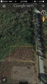 Home for sale: Lot 16 Hwy. 111 North, Pelham, GA 31779