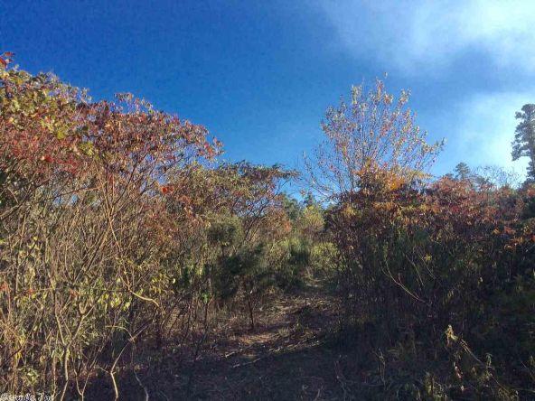 17430 Forest Service Rd. 18, Havana, AR 72842 Photo 6