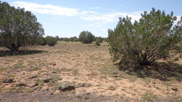 261 Juniperwood Ranch Lot 261, Ash Fork, AZ 86320 Photo 59
