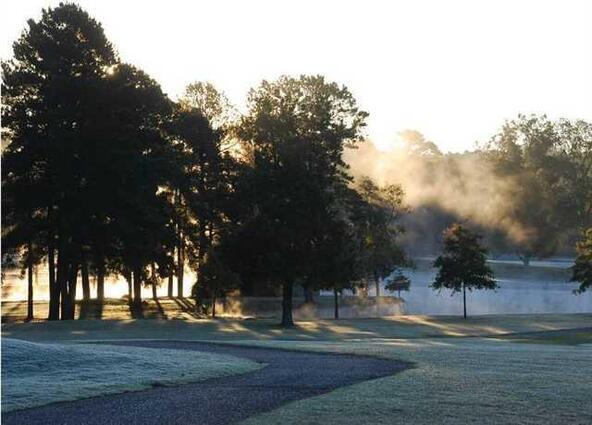 317 Arlington Park Dr., Hot Springs, AR 71901 Photo 1