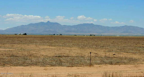 800 Ac Off Kansas Settlement, Willcox, AZ 85643 Photo 9