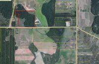 Home for sale: 000 E. Flournoy, Hawkinsville, GA 31036