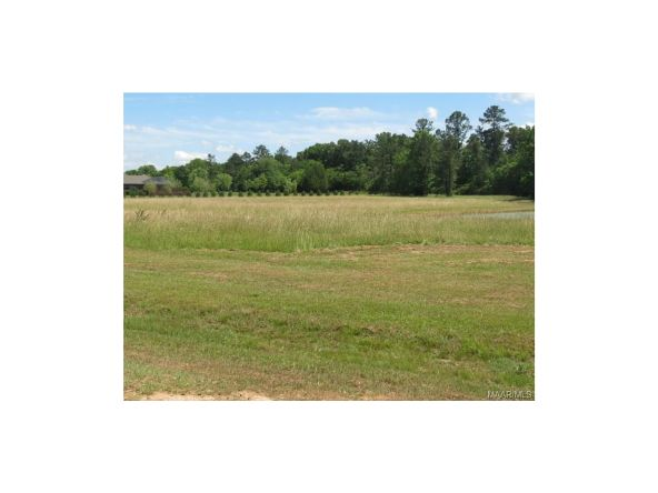 2 Vaughn Crossing Rd., Pike Road, AL 36064 Photo 7