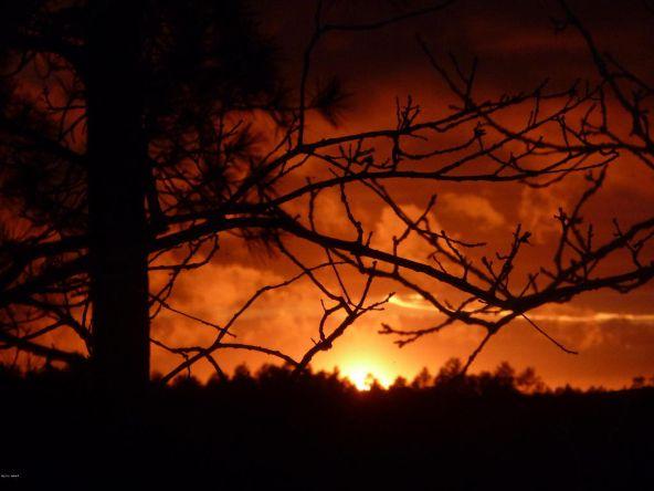 2151 E. Ridge Dr., Pinetop, AZ 85935 Photo 31