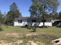 Home for sale: 1272 Oakwood Lakes Blvd., DeFuniak Springs, FL 32433