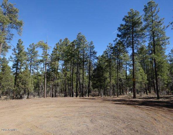 1090 W. Sadler Ln., Lakeside, AZ 85929 Photo 3