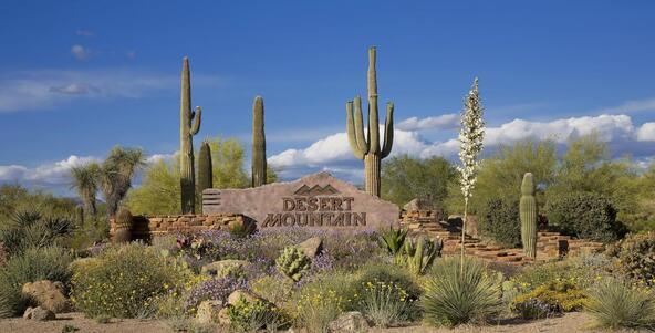 41865 N. 103rd Way, Scottsdale, AZ 85262 Photo 114