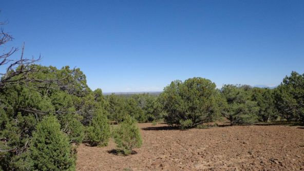 514 Westwood Ranch Lot 514, Seligman, AZ 86337 Photo 9