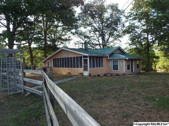 1654 County Rd. 641, Mentone, AL 35984 Photo 3