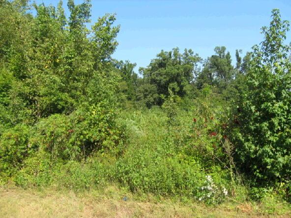 2 Acres Old Greensboro Rd., Jonesboro, AR 72401 Photo 4