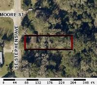 Home for sale: 229 S.E. Stephens Avenue, Madison, FL 32340