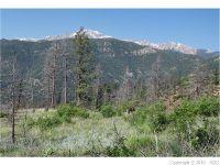 Home for sale: 4165 Pyramid Mountain Rd., Cascade, CO 80809