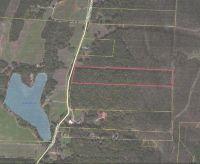 Home for sale: 0 Wildlife Lake Rd., Summerville, GA 30747