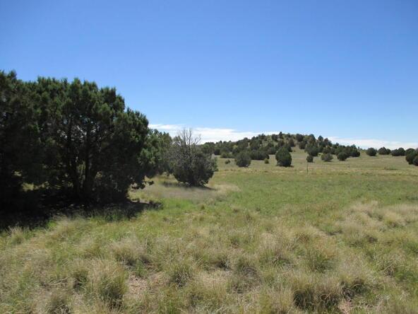 8451 W. Dillon Wash Rd., Prescott, AZ 86305 Photo 17