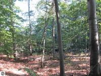 Home for sale: E. Gallivan Rd., Cedar, MI 49621