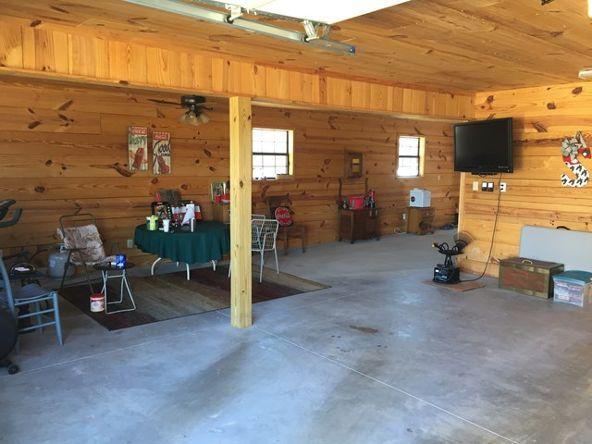 2430 Lost Creek Rd., Russellville, AL 35653 Photo 22