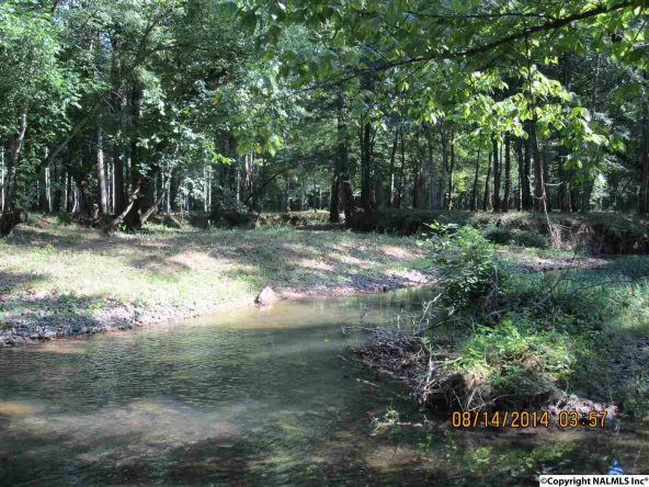 1865 County Rd. 99, Gaylesville, AL 35973 Photo 10