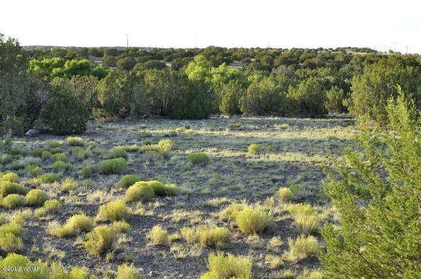 199.54 Acres, Concho, AZ 85924 Photo 12