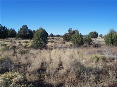 1357 W. Pinto Dr., Ash Fork, AZ 86320 Photo 26