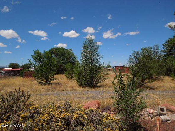 431 S. Tumbling T Dr., Springerville, AZ 85938 Photo 5