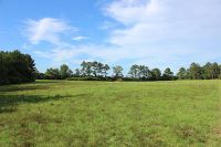 Home for sale: 12.57 Acres Dv Cooper Rd., Purvis, MS 39475