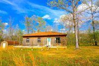 Home for sale: Box 221415 Rural Route 72, Alton, MO 65606