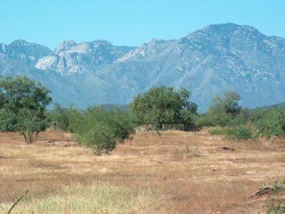 16550 W. Quinlin Tr, Tucson, AZ 85735 Photo 1