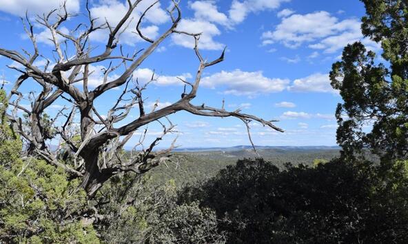 76+83+92 Shadow Rock Ranch, Seligman, AZ 86337 Photo 11