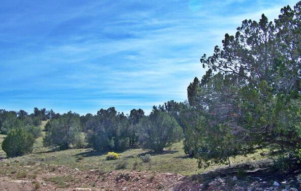 9262 W. Bandera Pass, Williams, AZ 86046 Photo 5