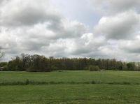 Home for sale: 469-10 North Farm Rd. 65, Bois D'Arc, MO 65612