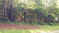 Home for sale: 166 Fairway Dr., Daphne, AL 36526