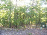 Home for sale: 134 Beacon Ridge Dr., Seven Lakes, NC 27376