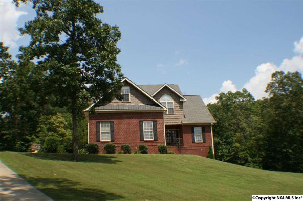 110 Fuller Dr., Glencoe, AL 35905 Photo 39