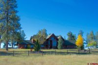 Home for sale: 1000 Echo Canyon Ranch Ln., Pagosa Springs, CO 81147