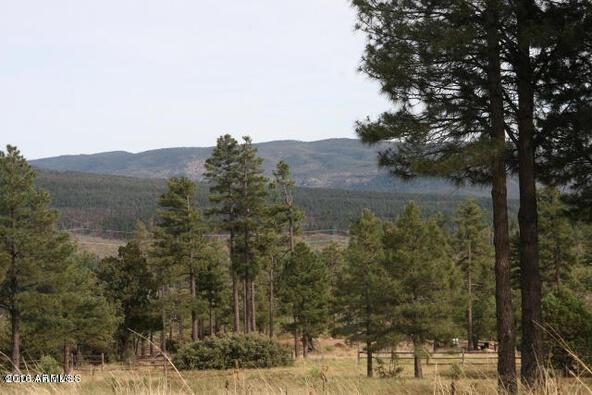 220 W. Zane Grey Cir., Christopher Creek, AZ 85541 Photo 5