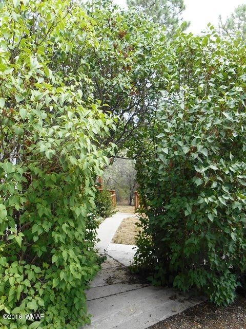 3337 Pine Cone Dr., Overgaard, AZ 85933 Photo 28