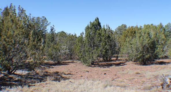 8 Acres Off Of Acr N. 3114, Vernon, AZ 85940 Photo 5