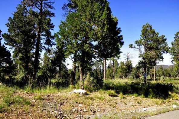 402 Cummings Dr., Ruidoso, NM 88345 Photo 15