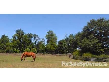 1426 Blair Farm Rd., Odenville, AL 35120 Photo 2